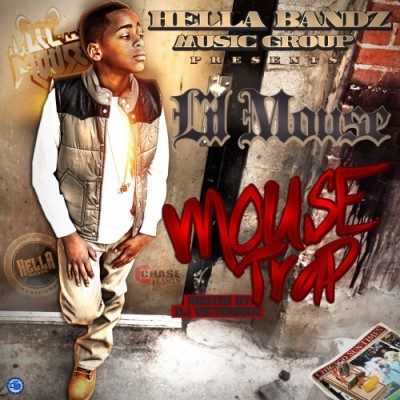 LIL-MOUSE-COVER